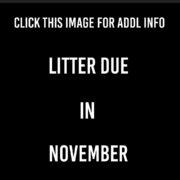 Litter Due in November
